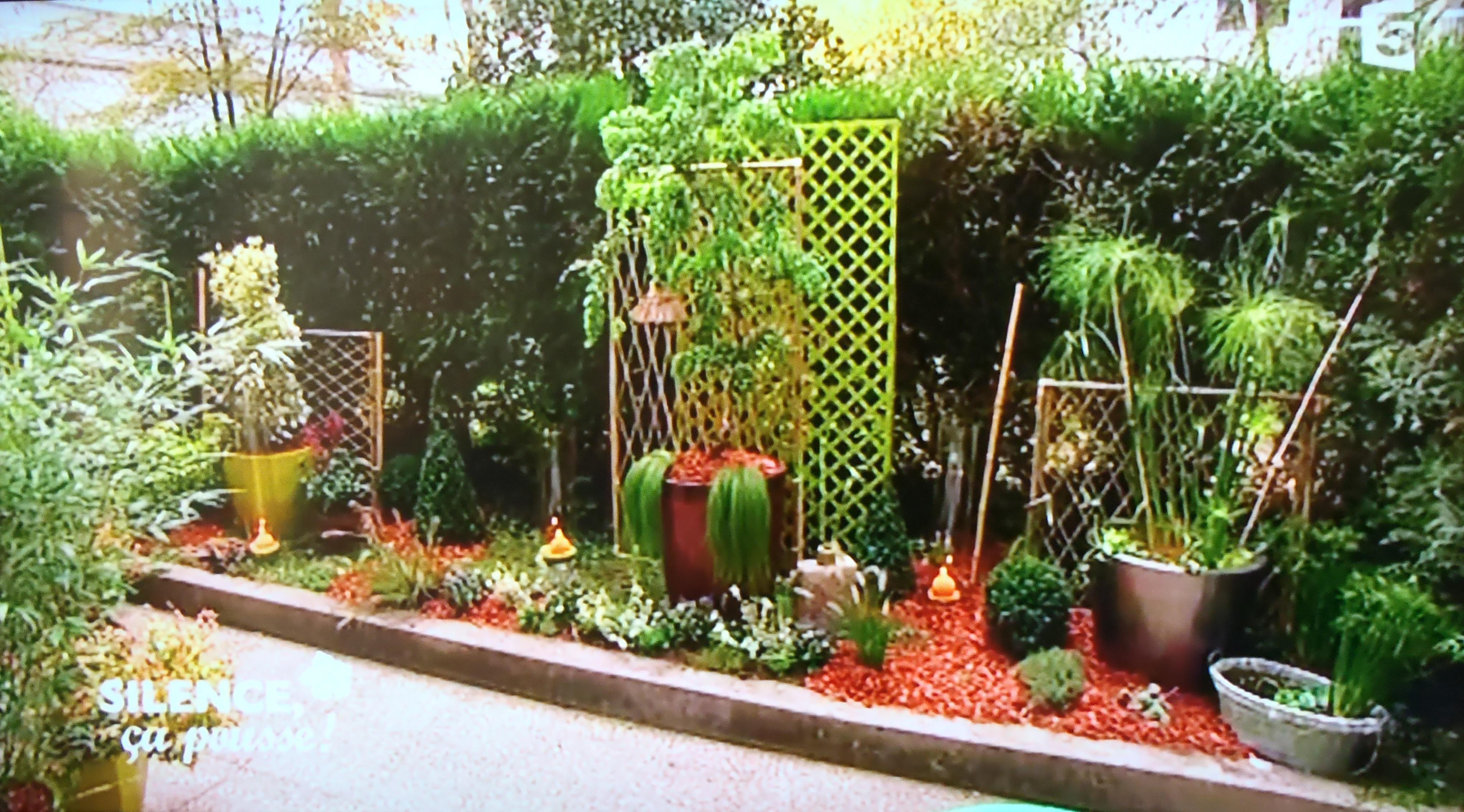 rez de jardin parisien touff par une haie pas de. Black Bedroom Furniture Sets. Home Design Ideas