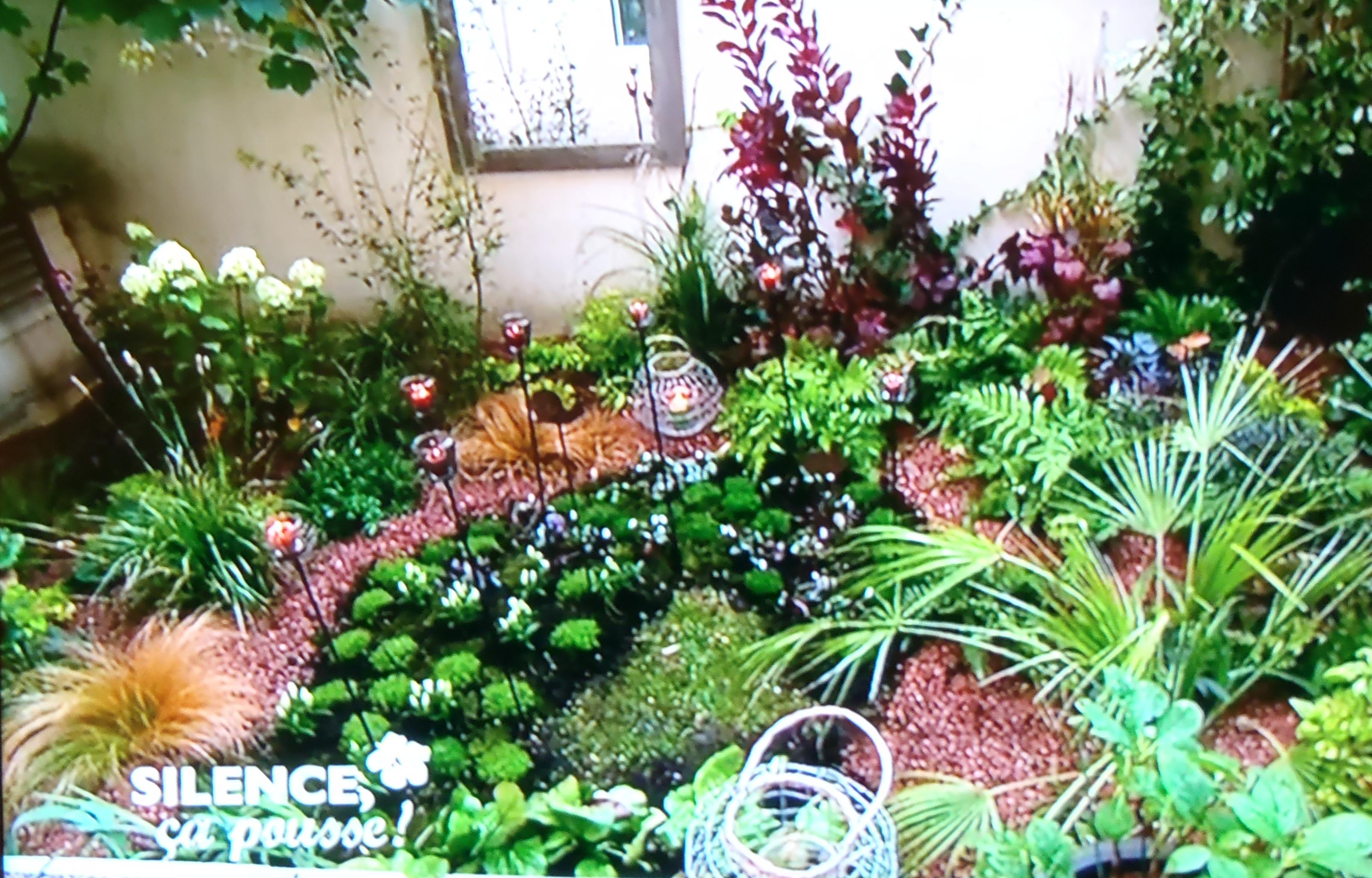 Un rez-de-jardin parisien raffiné  PAS DE PANIQUE ...