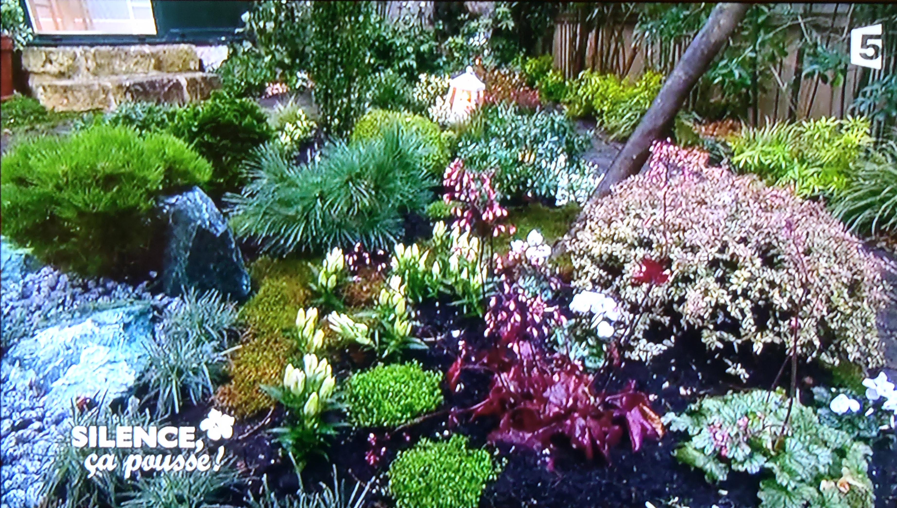 luxe petit jardin japonais idees de salon de jardin With exceptional idee amenagement jardin rectangulaire 8 jardin zen et japonais dijon design paysage