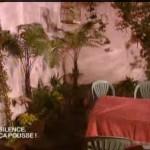Terrasse sub-tropicale à Paris