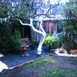 Jardin Japonais en climat océanique