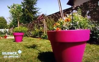 potager jardin terrasse