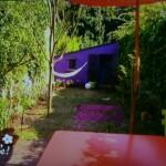 Un jardin en longueur très coloré en climat océanique