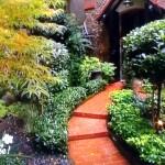 Aménager un petit jardin franco-anglais d'ombre en région parisienne