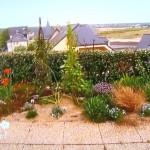 Aménager un jardin de bord de mer avec des plantes resistantes aux embruns