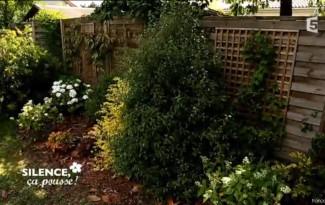 cacher palissade plante d'ombre