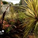 Transformer une cour en jardin sec
