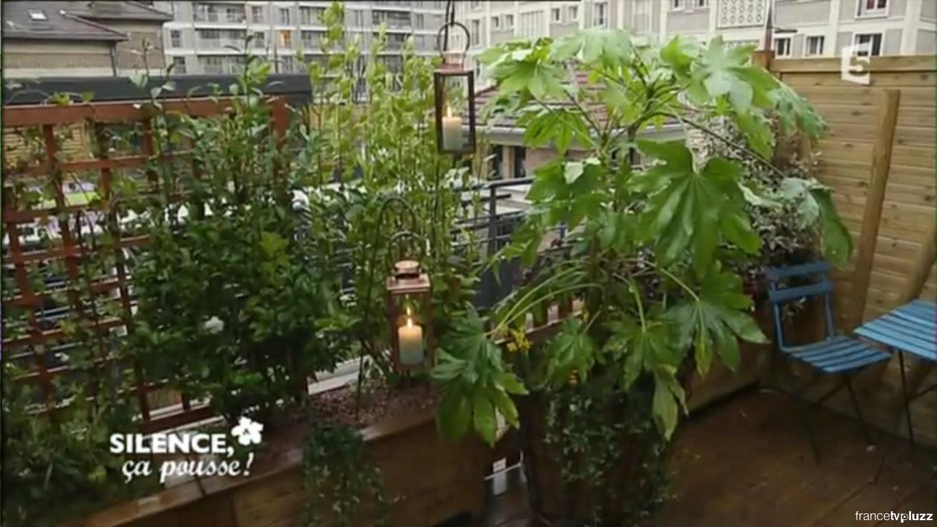 Comment Cacher Sa Terrasse comment transformer une terrasse en jardin | pas de panique