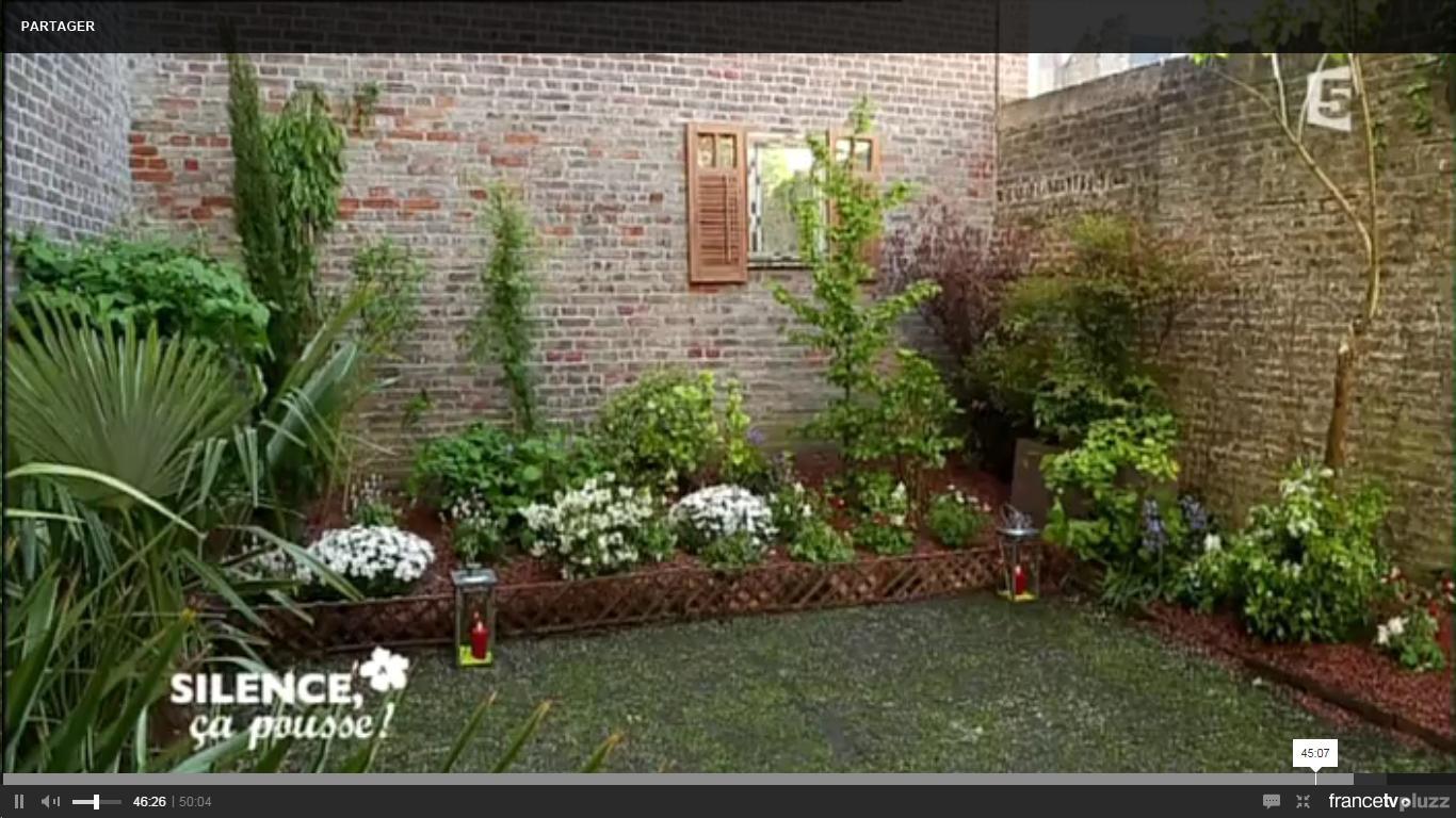 Comment Amenager Un Mur De Jardin habiller un mur en brique | pas de panique, décryptage de l