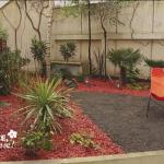 Créer un jardin exotique sous nos climats parisiens